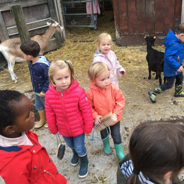 Kikkerklas: thema boerderij.