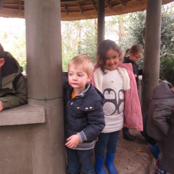 Met de girafjes de herfst opsnuiven in het Beukenhof