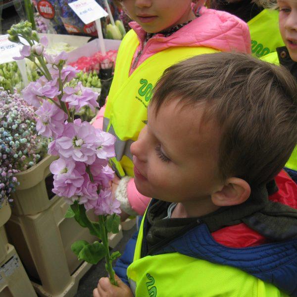 Ik geef een heel mooi bloemetje