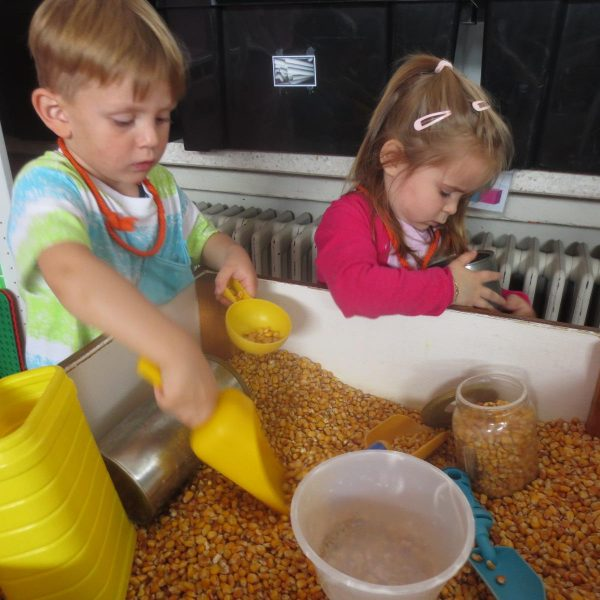 Thema de boerderij in de bijtjesklas