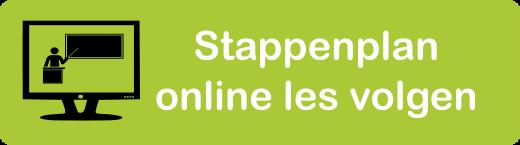 Stappenplan online les leerling